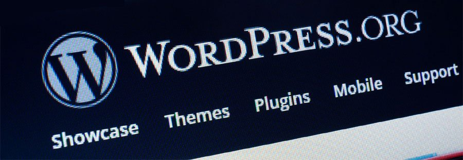 10 Reasons Why WordPress is Best Platform for Bloggers