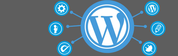 Best WordPress Development Company in Jaipur Custom CMS Design