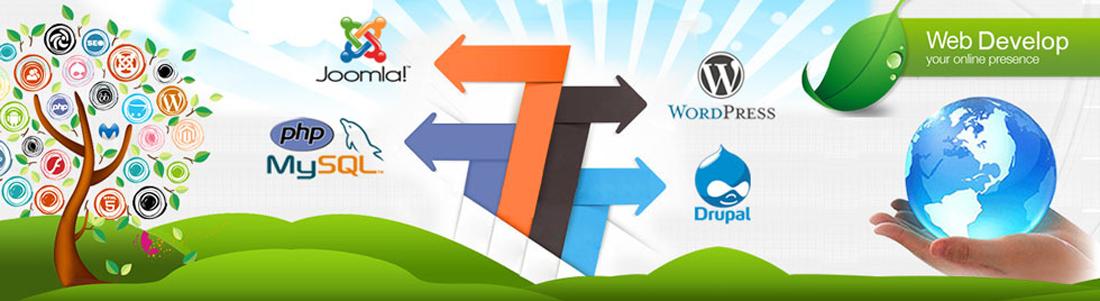 Website Development Company in Jaipur - Hire Best Web Developer
